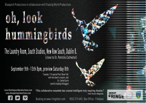 hummingbirdsposter